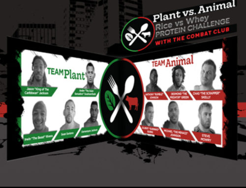 MMA Fighters Videos Study Series & Website – Plant vs Animal Proteins