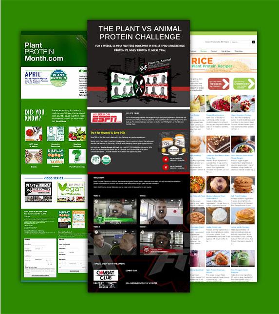 website landing pages design