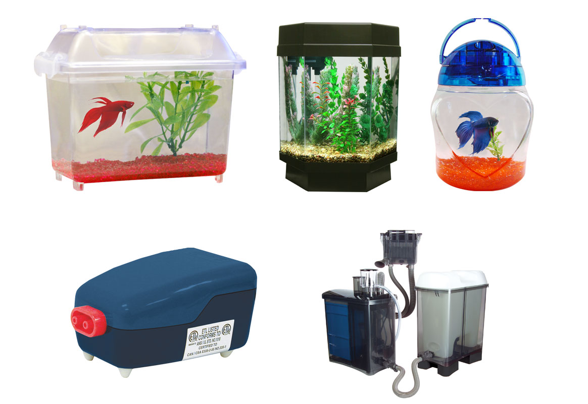 Professional Aquatic Photography: Aquariums, Pumps and Fish